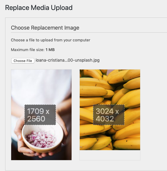 Replace Media Upload page with a replacement image uploaded