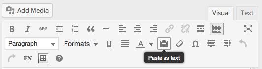 Paste as text button