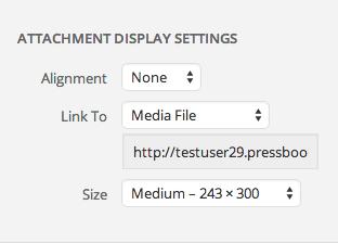 Customize how an image displays